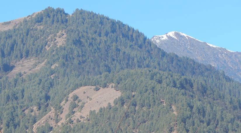 Pike Peak Climb