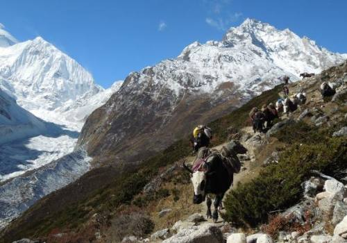 Manaslu and Annapurna Trek with Tilicho Lake